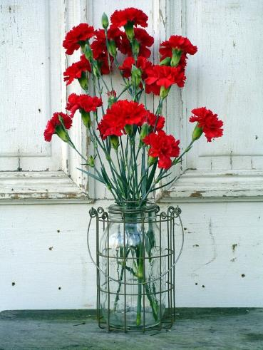 Wirework_Mason_Jar_Basket_Vase_w_flowers-369x491