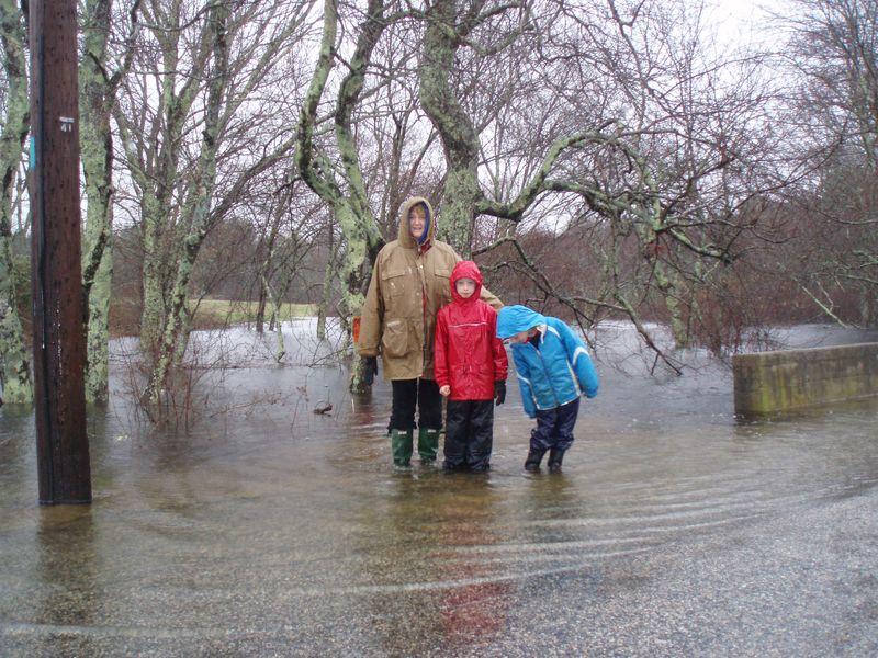 Jewels ebay flood 014