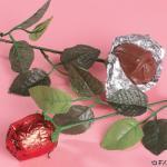 Choco_roses